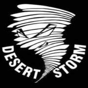 desert storm records